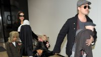 Съдът отказа молбата на Брад Пит за попечителство