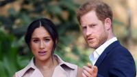 Принц Хари и Меган Маркъл викат полиция заради дронове