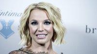 """""""Бритни срещу Спиърс"""" - скандалите в семейството, документирани във филм"""