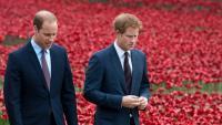 Принц Уилям е загрижен за брат си, с Хари са в чудесни отношения