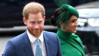 Меган Маркъл и принц Хари с първа телевизионна изява, но се сдобиха с критики