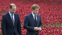 Принц Уилям и принц Хари ще произнасят речи отделно при откриването на статуята на принцеса Даяна