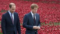 Принц Уилям и принц Хари се опитват да се сдобрят