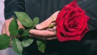Фики показа любовта на живота си