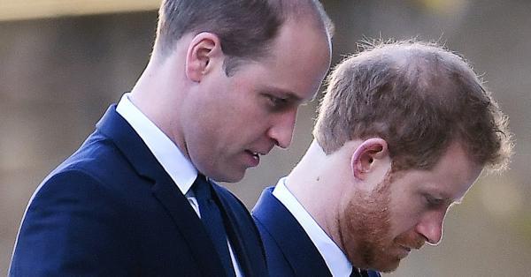 """Принц Хари и принц Уилям, според кралски експерти, """"обявяват временно"""
