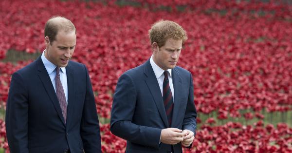 39-годишният принц Уилям и 36-годишният принц Хари ще изнесат отделни