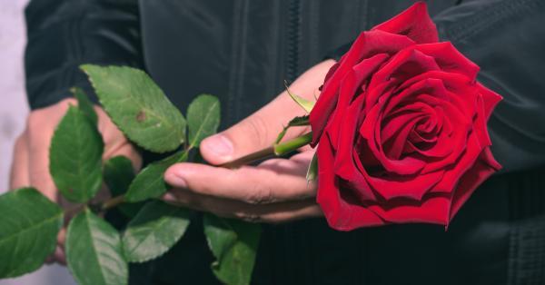 Фики показа за пореден път любовта на живота си, обяснявайки